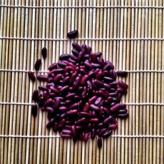 Rok 2016 patří fazolím