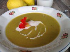 Krémová tuřínová polévka
