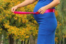 Přednáška: Vliv stravy na těhotenství