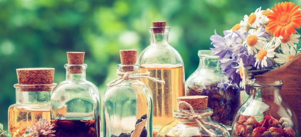 Seminář: Léčivá síla bylin
