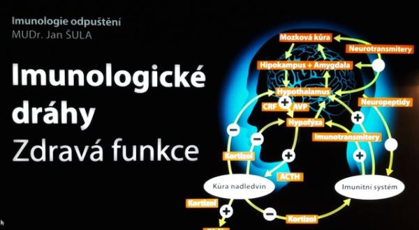 Imunologie odpuštění – MUDr. Jan Šula
