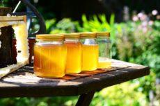 Zdravotní benefity medu