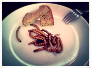 Hmyz k jídlu - Potemník brazilský
